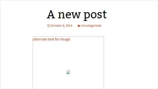 broken image alt text