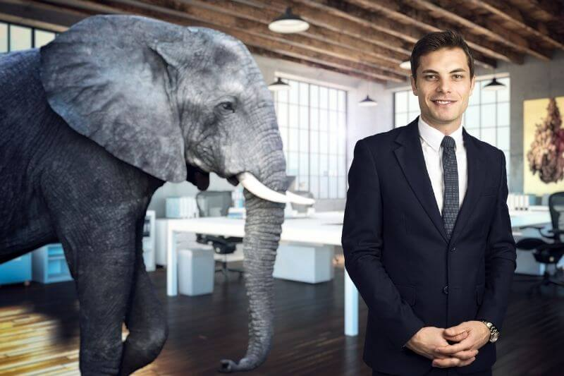Don't leave difficult questions unasked - confront the elephant in the room
